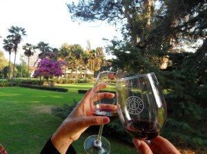 Vinhos Chilenos SomosdoMundo