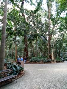 Parque Trianon SomosdoMundo